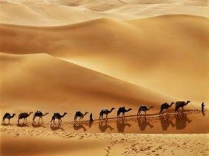 Caravan Arabian desert
