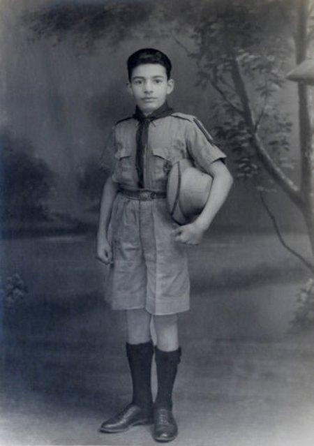 VDM-scout