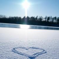 FRASI Sulla Neve  Frasi Belle Neve Aforismi e Pensieri