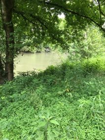 Land for sale Tazewell TN