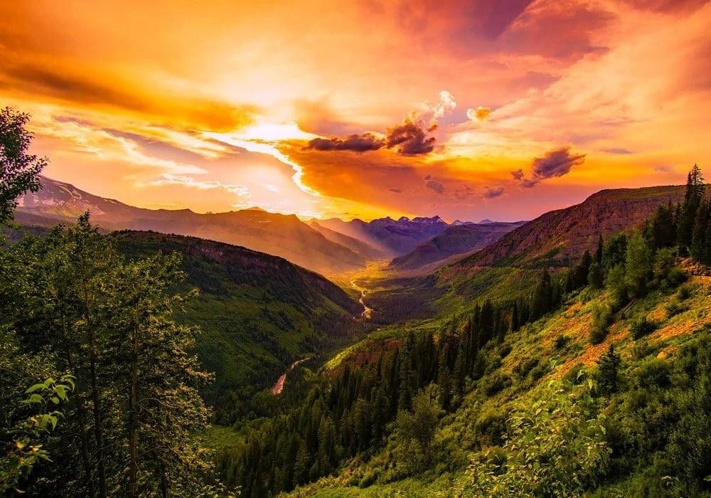 Le 35 pi belle frasi sulla Natura in inglese e italiano
