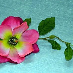 Magnolia spray crema/rosa