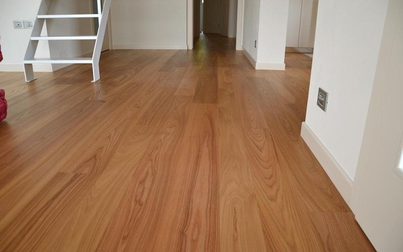 Pavimento in legno di Olmo Americano o Europeo  Fratelli Pellizzari