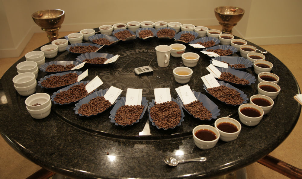 An Education  Cupping 19 unique microlots  Fratello