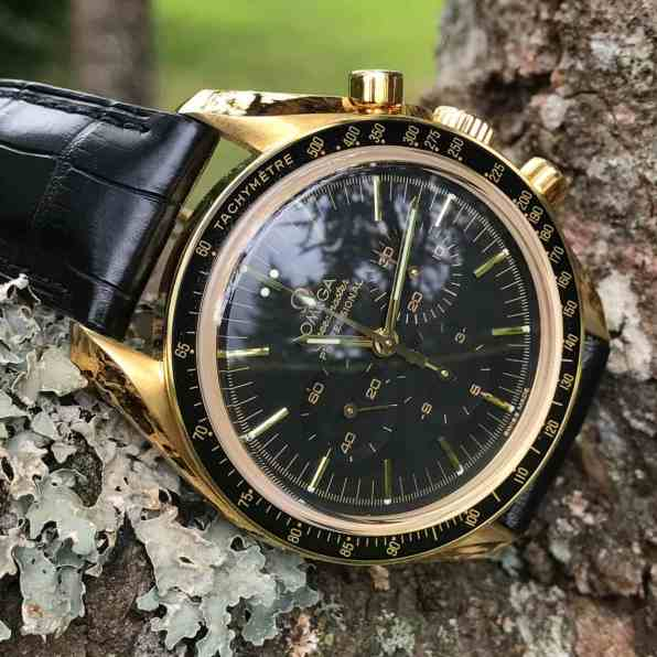 Gold Speedy 3