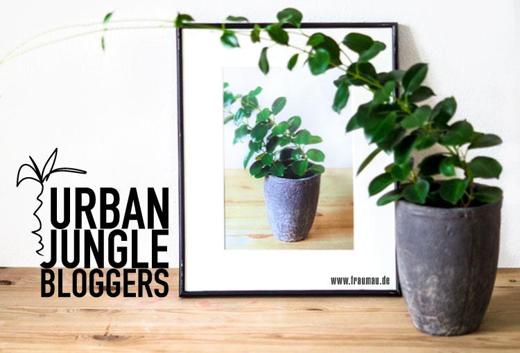 fraumau_Plantception_UrbanJungleBloggers_PlantsANDart_Beitrag3
