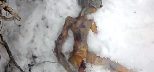 Alien body found in Russia
