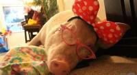 Esther sleeping