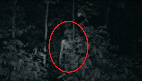 Alien in woods circle