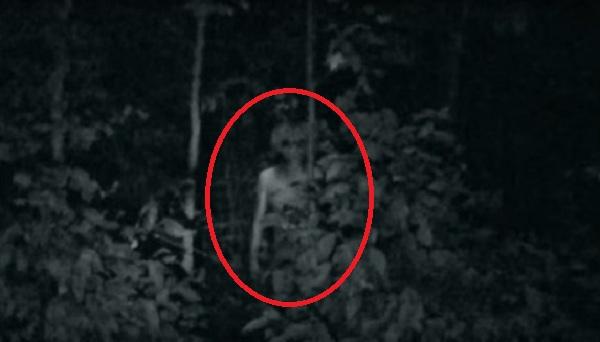 Alien in woods circle