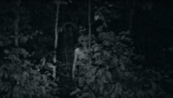 Alien in woods