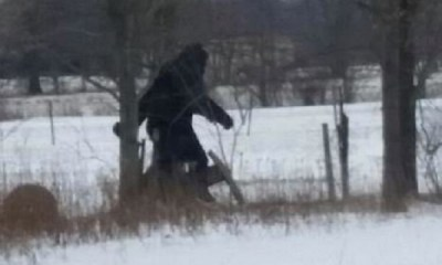 Bigfoot in Ohio