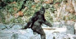 patternson Bigfoot