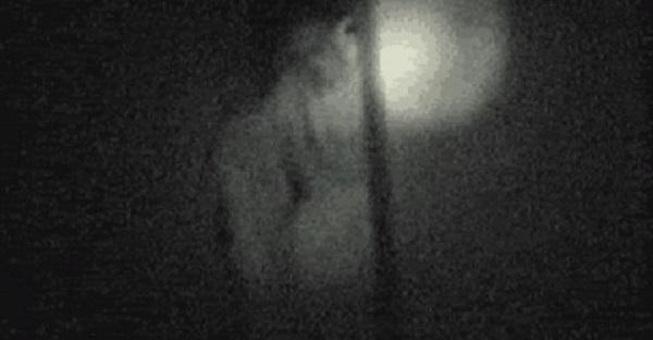 barton-ghost