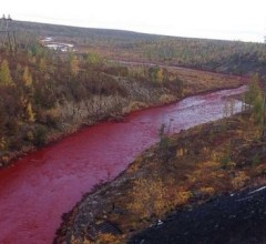 russian-river-red