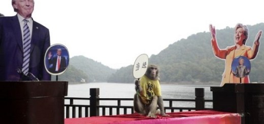 Monkey King Geda makes USA political prediction
