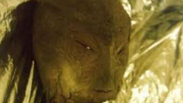alien-creature-head
