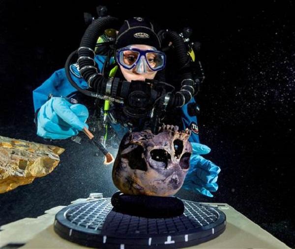 Naia skull