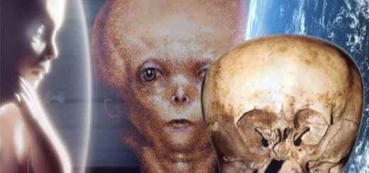 Starchild skull found in Mexico