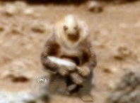 Ancient Martian Soldier Found On Mars In NASA Photo