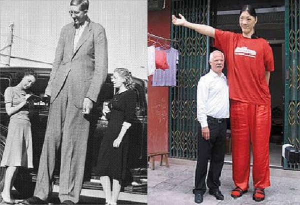 Robert Pershing Wadlow and Yao Defen