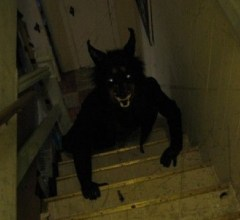 Werewolf on stairs zoom