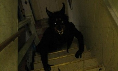 Werewolf on stairs zoom