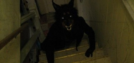 Mysterious werewolf photo taken on stairs