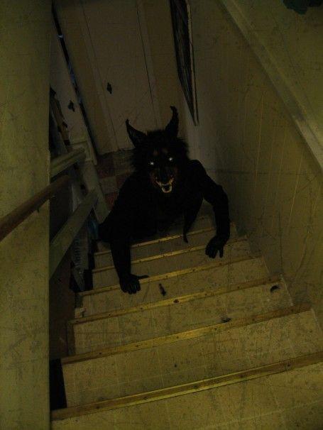 Werewolf on stairs