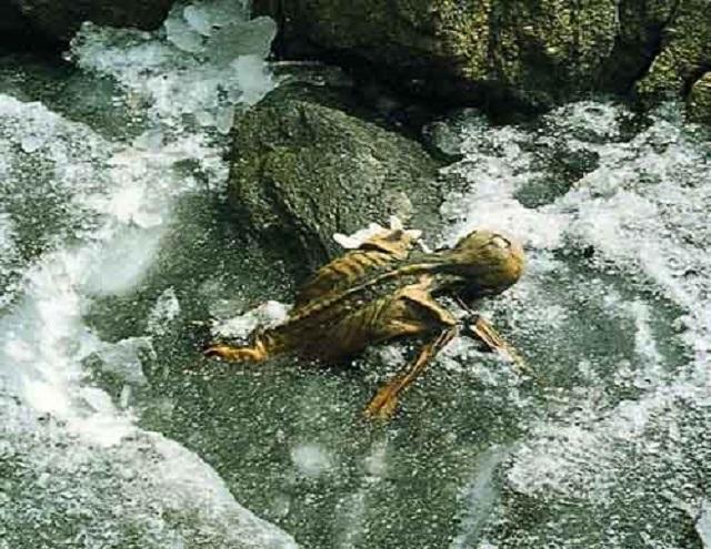 Ötzi corpse