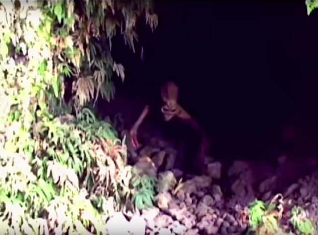 Cave creature video Columbia awakened