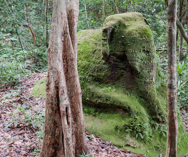 Elephant ruins near staircase in Cambodia