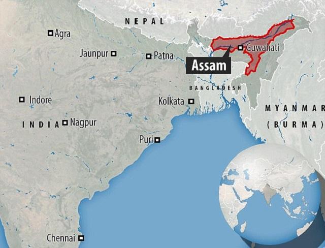 Assam India