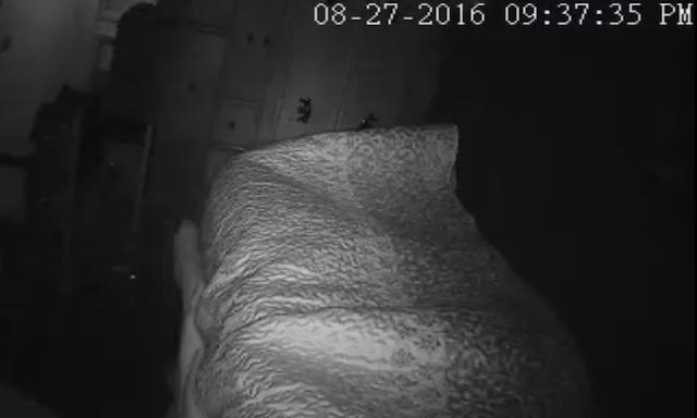 Man's bed shadowy fiend