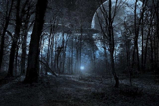 UFO in woods
