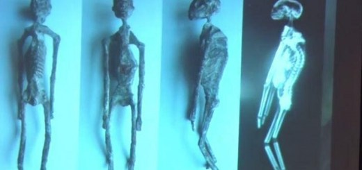Mystifying mummies found in Peru believed to be alien reptilian