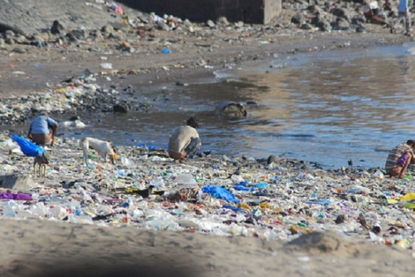 Shitting at the beach of Mahim near Mumbai