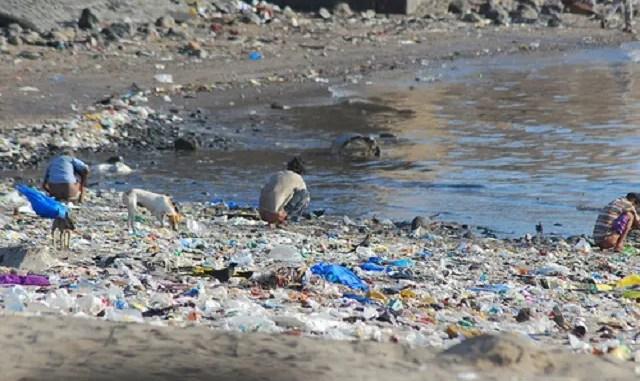 Shitting at the beach of Mahim near Mumbai