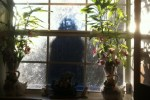 Ghost behind the window glass
