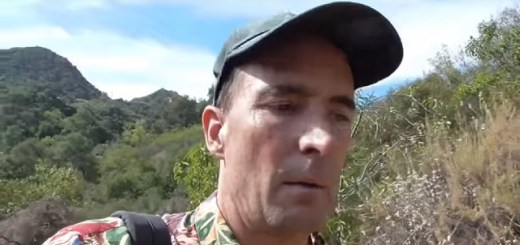 Los Angeles man harassed by reptilian shapeshifters
