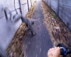 dog monkey creature GoPro in Hungry