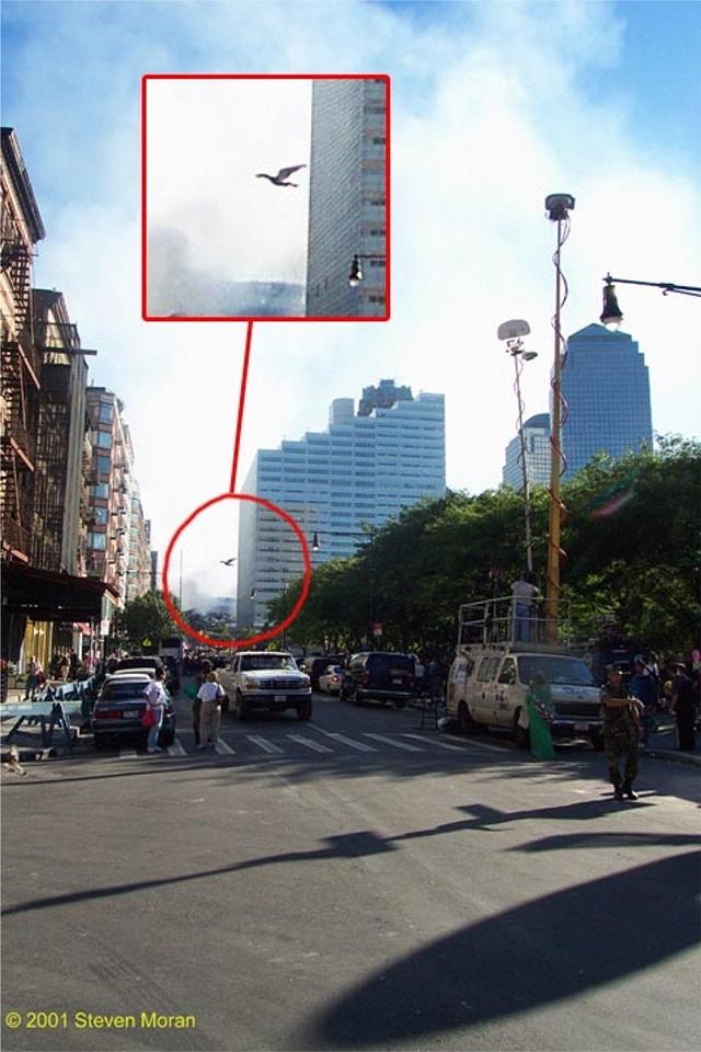 Mothman at 9/11