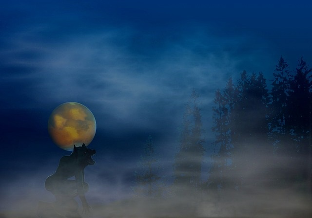Werewolf howling at night during full moon
