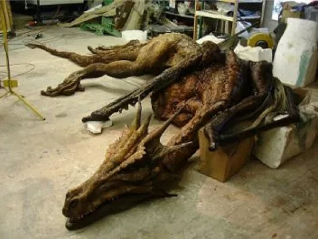 Guanling County, Anshun City dragon corpse