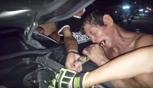 Image: Rahjit Phan biting snake trapped in truck engine