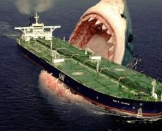 Megalodon shark still lives
