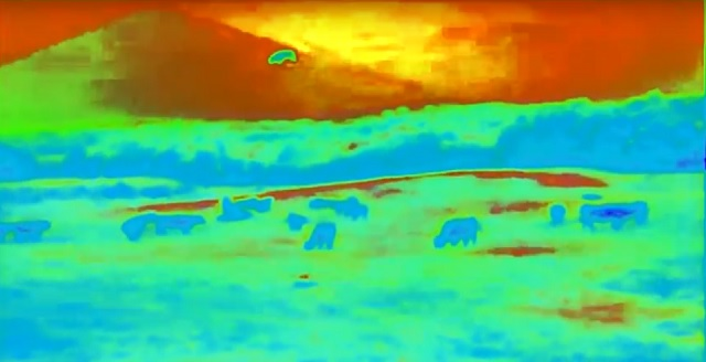UFO cow abduction video heat map sky