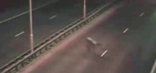Strange humanoid creature captured crossing highway