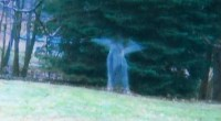 Angelic spirit in Michigan