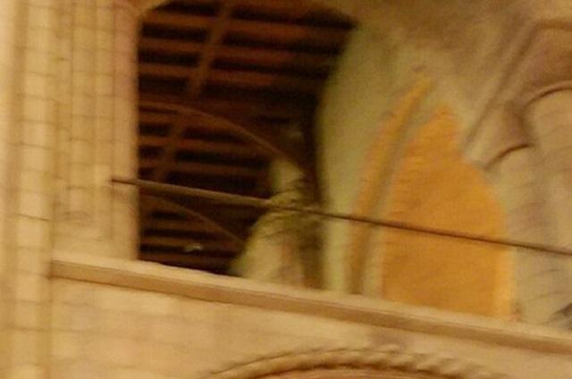 Bishop ghost Norwich
